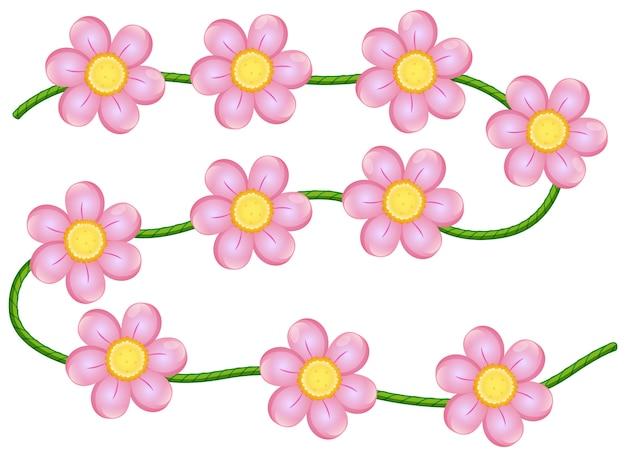 Vine bloemen