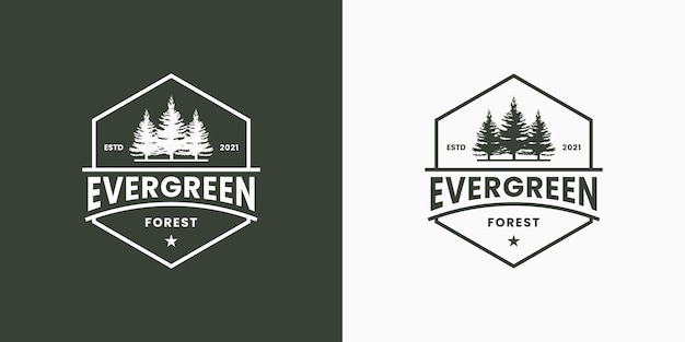 Vintage badge groenblijvend met zeshoekig frame logo ontwerp retro