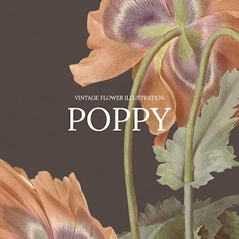 Vintage bloemensjabloon met papaverachtergrond, geremixt van kunstwerken uit het publieke domein