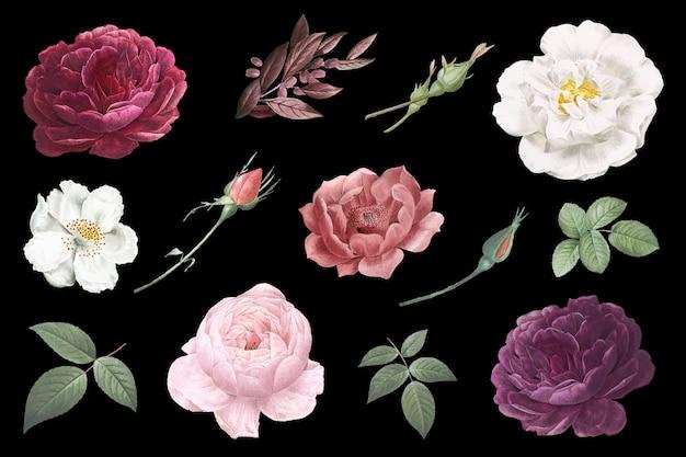 Vintage bloemtekeningen