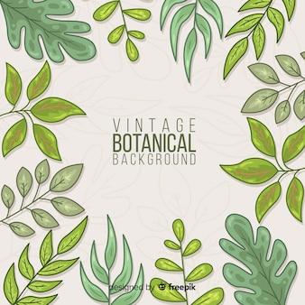 Vintage botanische achtergrond