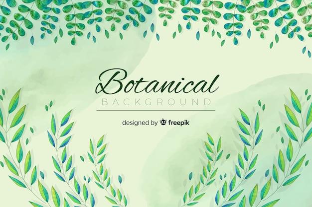 Vintage botanische bckground