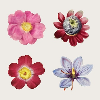 Vintage collectie rozen en lelies