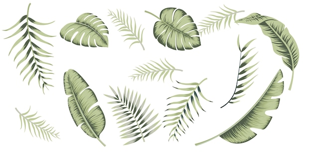Vintage collectie tropische bladeren voor behangontwerp. exotische bruiloft florale decoratie. vakantie decoratie. mode print. vintage achtergrond poster.