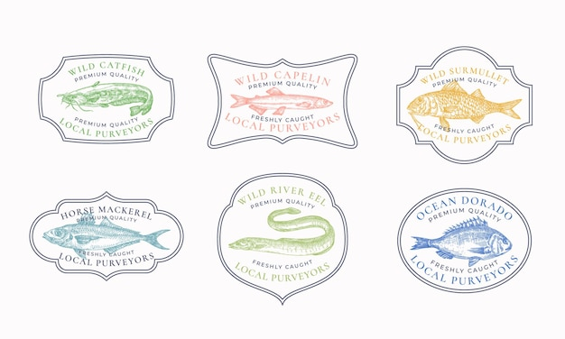 Vintage frame badges of logo sjablonen set meerval lodde horsmakreel surmullet etc illustratie...