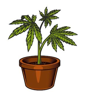 Vintage groene wietplant