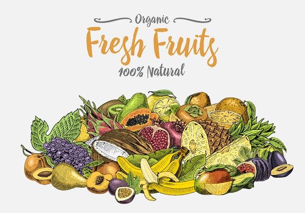 Vintage, hand getrokken vers fruit achtergrond, zomerplanten, vegetarische en biologische citrus en andere, gegraveerd. ananas, citroen, papaja, pitaya, maracuya en bananen.