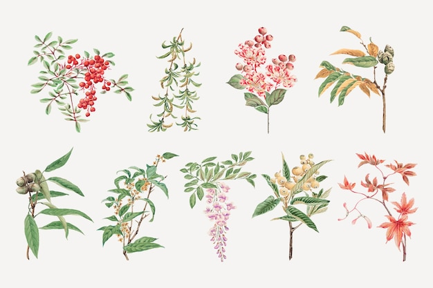 Vintage japanse boom vector kunst print, remix van kunstwerken van megata morikaga