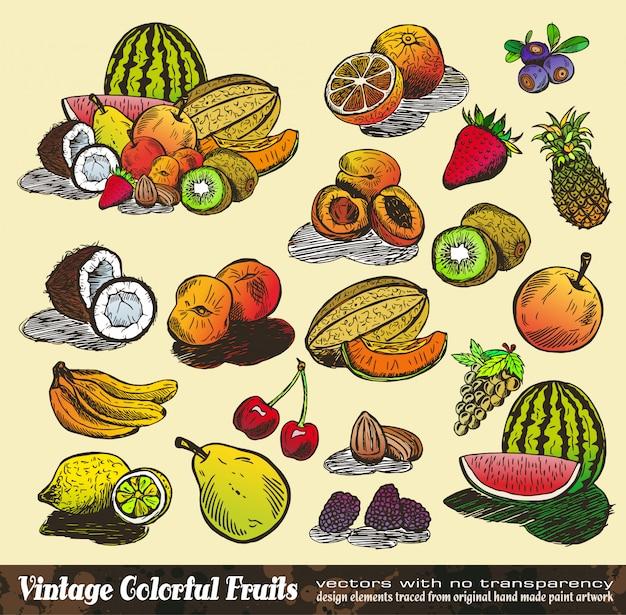 Vintage kleurrijke fruitcollectie