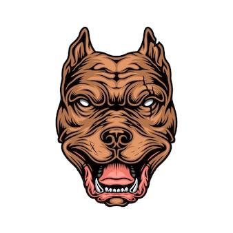 Vintage kleurrijke wrede pitbull hoofd