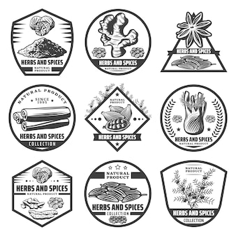 Vintage kruiden en specerijen labels set met verse biologische natuurlijke gezonde producten in zwart-wit stijl geïsoleerd