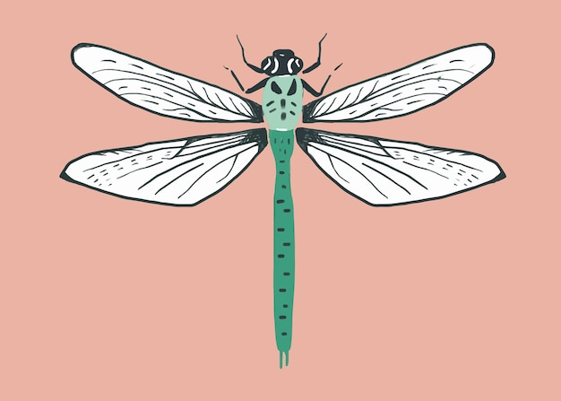 Vintage libelinsect stencilpatroon