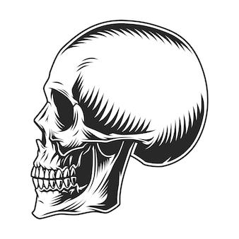 Vintage menselijke schedel profielsjabloon