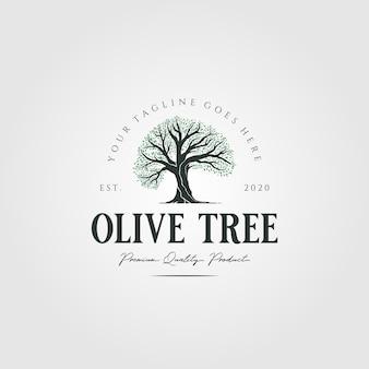 Vintage olijfboom natuur logo