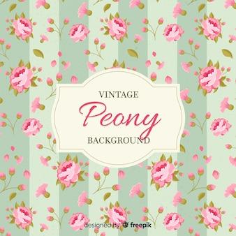 Vintage pioenroos bloem achtergrond