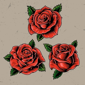 Vintage rode bloeiende rozen concept