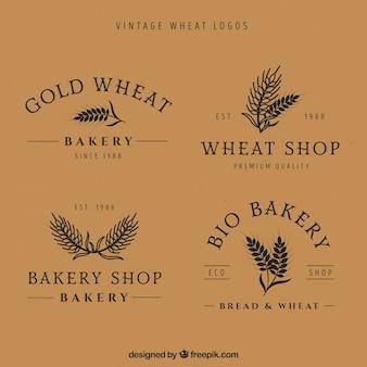 Vintage tarwe logo collectie