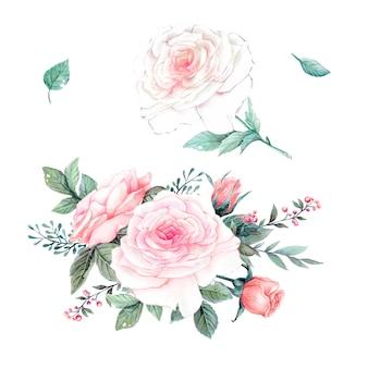 Vintage vector het ontwerpreeks van waterverf roze rozen.