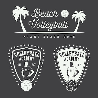 Vintage volleybalemblemen en logo.