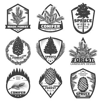 Vintage zwart-wit coniferenetiketten met geïsoleerde sparrenboomtakken en kegels