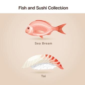 Vis en sushi set