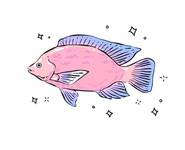 Vis . vis doodle