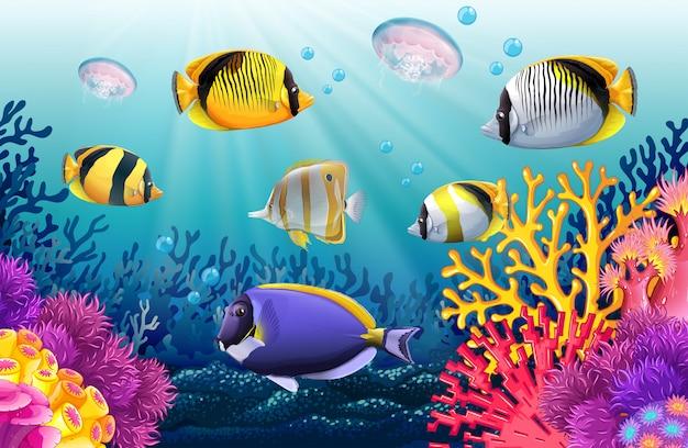 Vissen zwemmen onder de zee