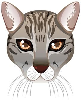 Vissend kattengezicht in cartoonstijl op witte achtergrond