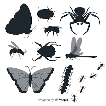 Vlakke insecten silhouet collectie