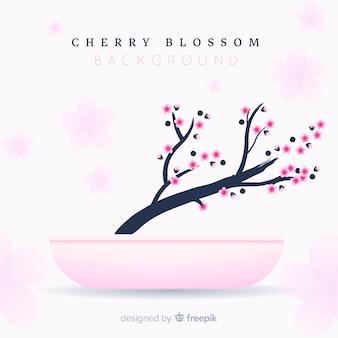 Vlakke kersenbloesem tak op bloempot achtergrond
