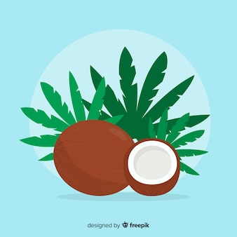 Vlakke kokosnootillustratie