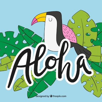 Vlakke ontwerp aloha tucano achtergrond