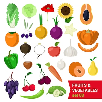 Vlakke stijl mooie kwaliteitsset van groenten en fruit. kool salade zonnebloem moer olijven papaver kaki wortel peer ui carambole appel druif kers komkommer kastanje raap. creatieve voedselcollectie