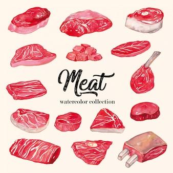 Vlees aquarel collectie