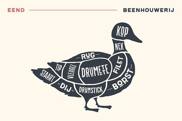 Vlees snijdt. slager diagram en schema - eend. vintage handgetekende zwart-wit typografisch met tekst op nederlands.