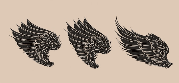 Vleugels pakken