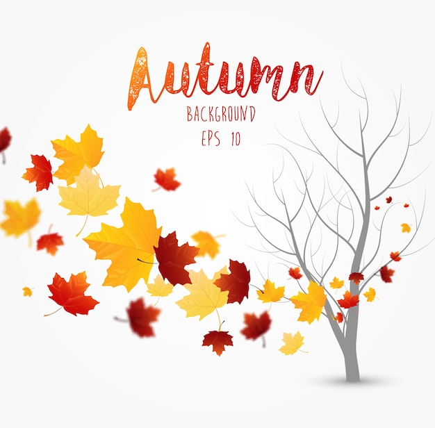 Vliegende herfstbladeren achtergrond