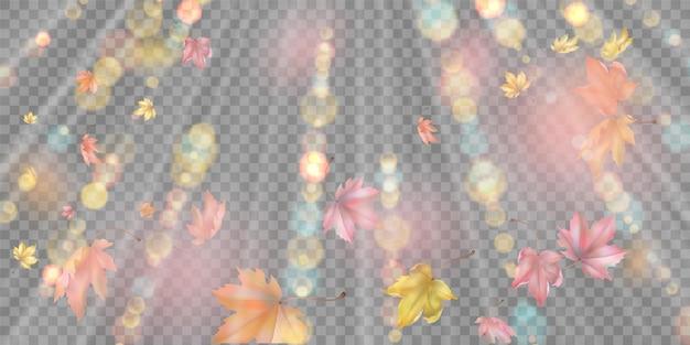 Vliegende herfstbladeren