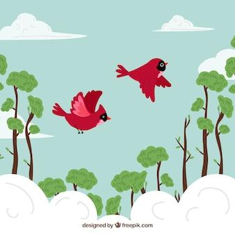 Vliegende rode vogels achtergrond