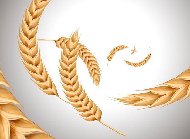 Vliegende tarwe ingrediënten op parel witte achtergrond