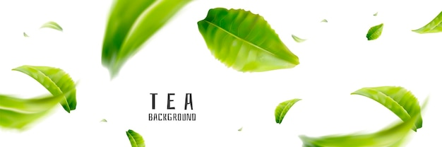 Vliegende theeachtergrond, verse ontwerpelementen in 3d illustratie