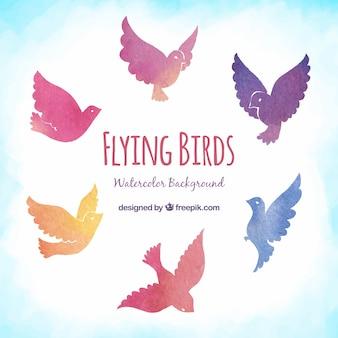 Vliegende vogels achtergrond