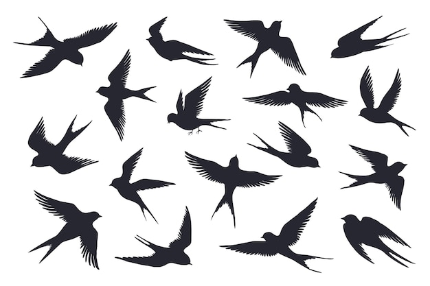 Vliegende vogels silhouet illustratie