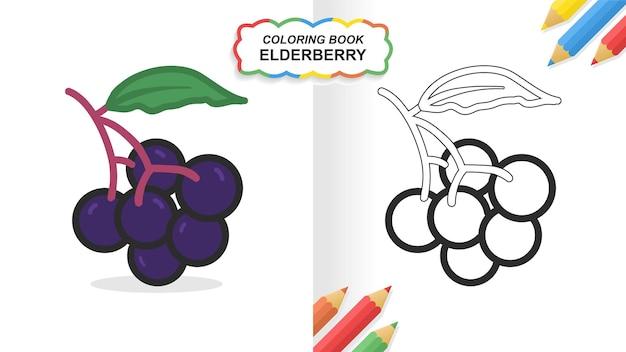 Vlierbessen hand getekend kleurboek om te leren. egale kleur klaar om af te drukken