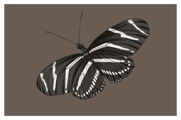 Vlinder is zwart-wit handtekening