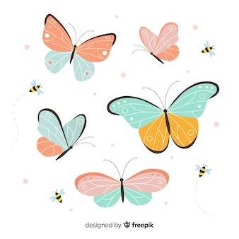 Vlinder verzameling