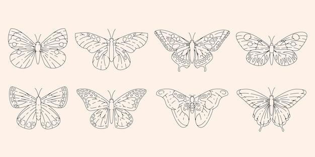 Vlinders in schetsontwerp