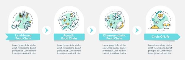 Voedselketen vector infographic sjabloon. biologisch proces. biodiversiteit presentatie ontwerpelementen. datavisualisatie met 4 stappen. proces tijdlijn grafiek. workflowlay-out met lineaire pictogrammen