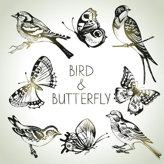 Vogel- en vlinderset, met de hand getekende illustraties