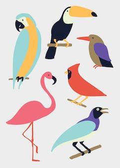Vogel illustratie